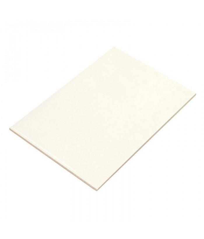 Плитка настенная  ВКЗ 200х300х7 мм Белая Люкс